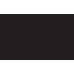 Logo STNDT_black
